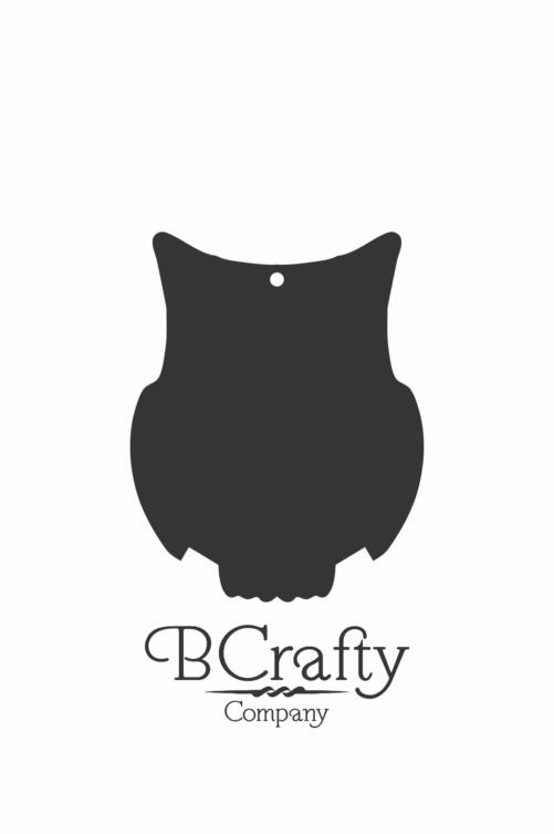C1030171 Acrylic Owl Blank
